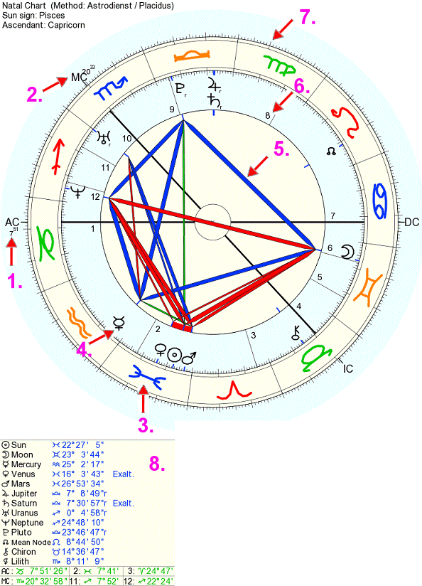 Explanation Of A Horoscope Birth Chart Drawing What Is In